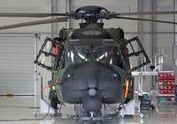 NH90_FOC_1