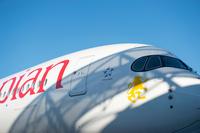 AE_A350_closeup