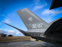 Italy_F35_tail_iceland